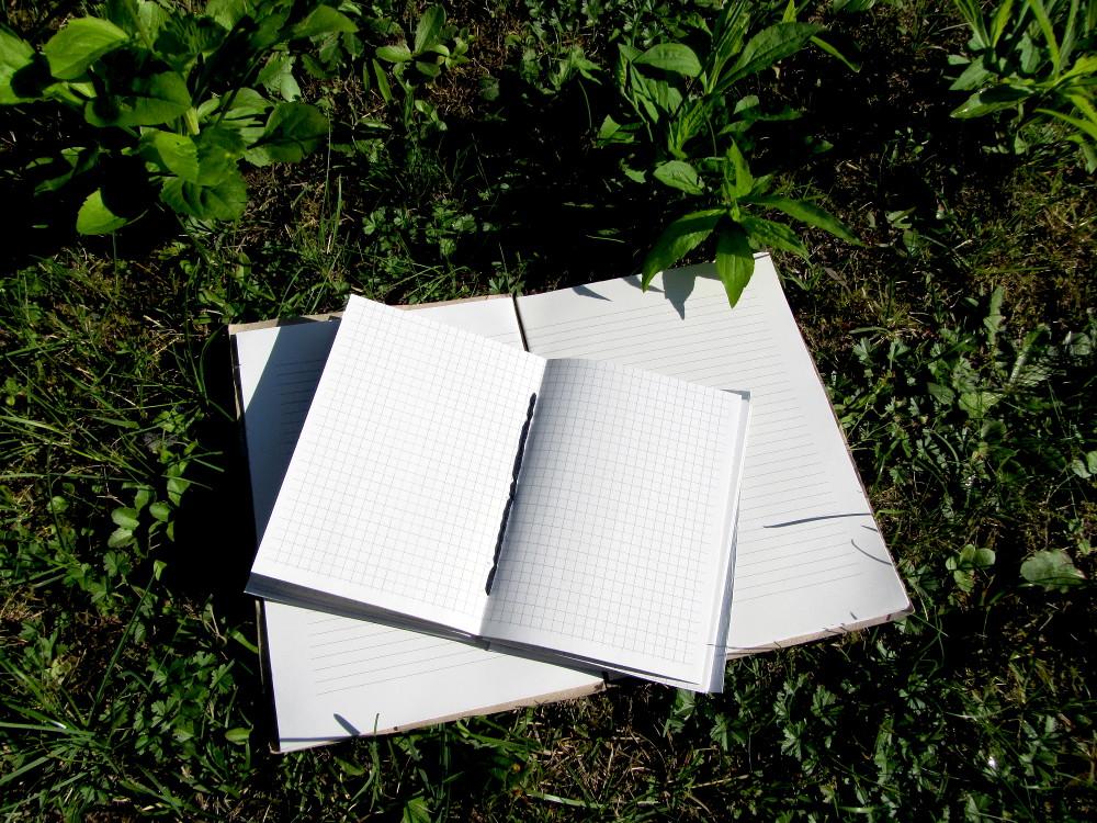 Blanko-Bücher selbst gemacht - geöffnet