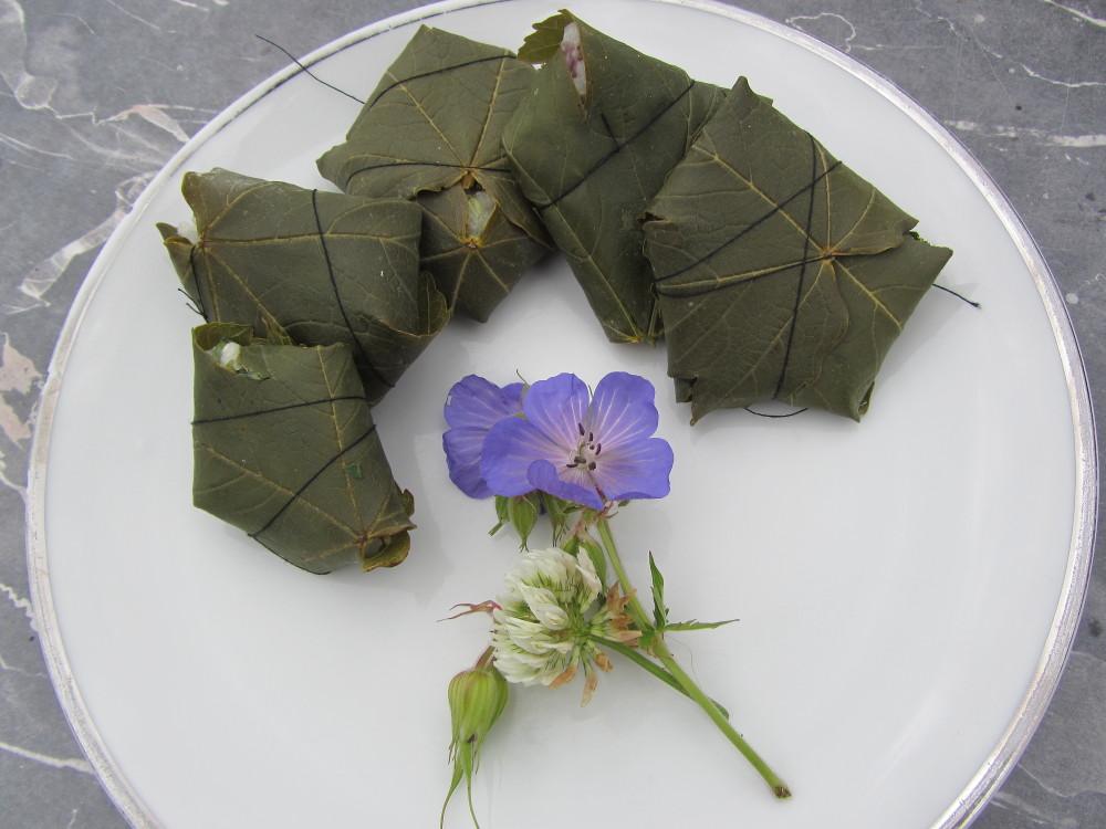 Ökologisch verreisen - gefüllte Ahornblätter